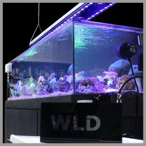 Luminária aquário marinho Sun Power